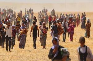 Mülteci Hukuku