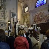 Festa della Madonna di Borbiago, Araldi in Italia (20)-001