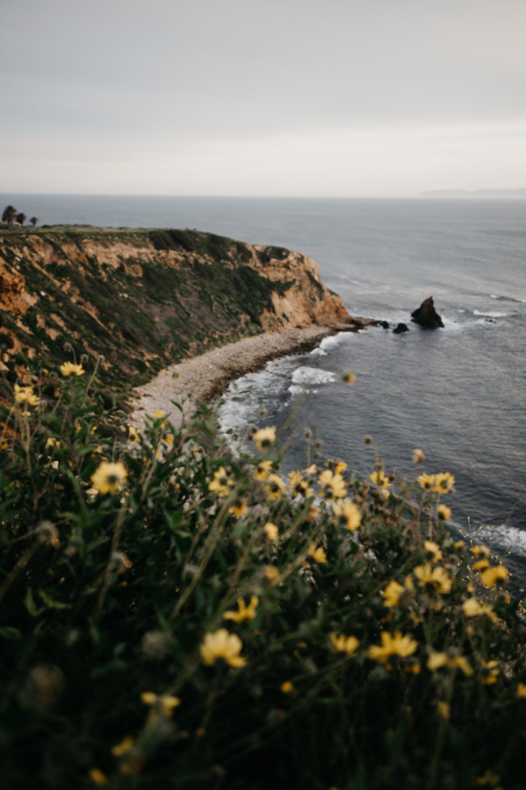 Palos Verdes Coast Wallpaper, image by Fatima Elreda Photo