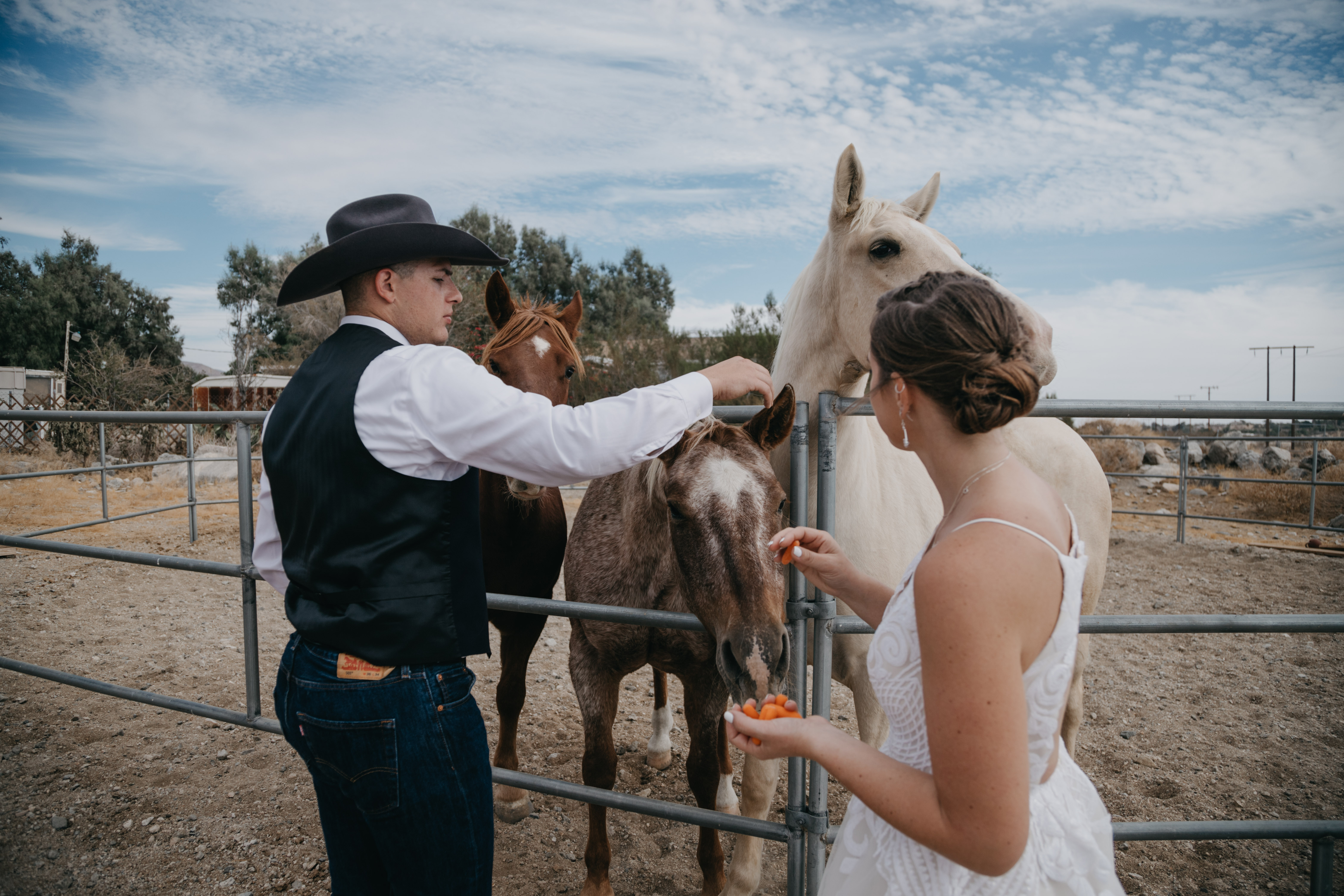 Bride and groom portrait with horses, image by Fatima Elreda Photo