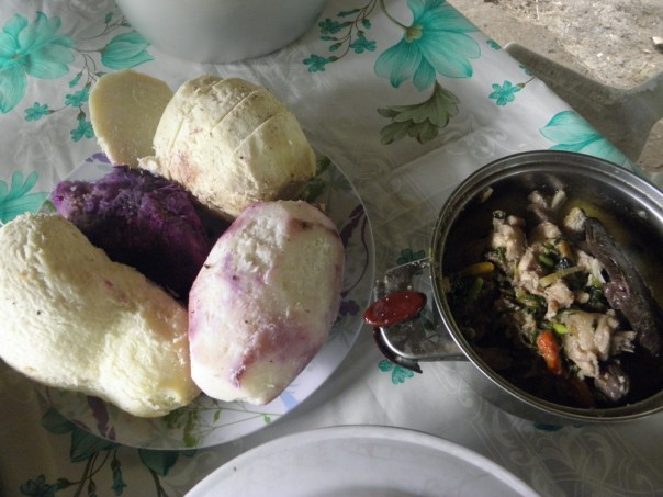 Native chicken in coconut cream served with boiled ubi (purple yam). The dark brown piece on top of the chicken stew is blood, also a favourite of mine ...