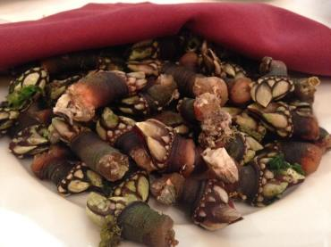 percebes en Don Quijote
