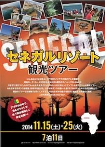 senegal tour