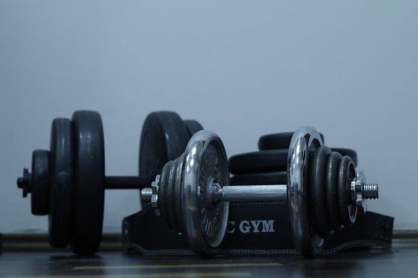 a guide to building muscle for better health - A Guide To Building Muscle For Better Health!