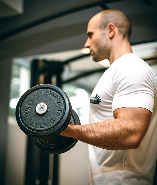 want to build muscle heres how to find success - Want To Build Muscle? Here's How To Find Success!