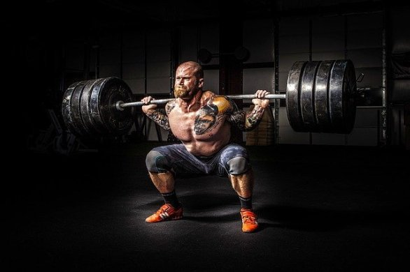 simple muscle development tips you need to know 1 - Simple Muscle Development Tips You Need To Know