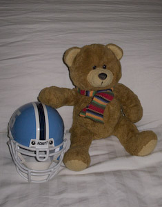 Mr. Teddy and Helmet - No Comment!