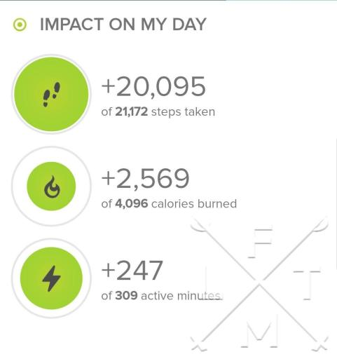 Stats from today's hike from my fitbit. Today was a total of 20,095 steps