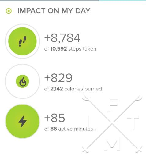 Stats from today's hike on fitbit.com.  Today's hike was 8,784 steps.
