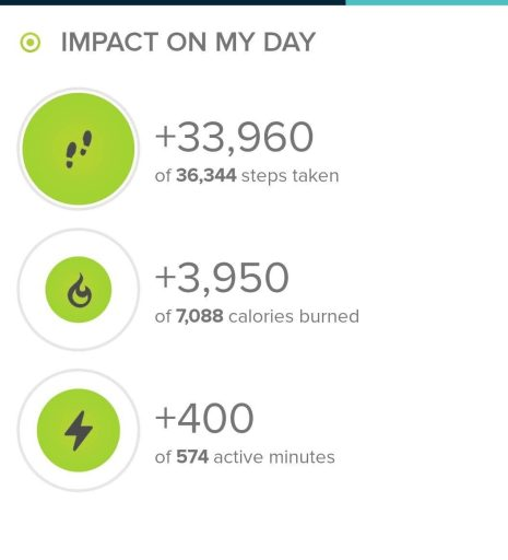 Stats from today's hike from fitbit.com.  Today's step count was 33,960.