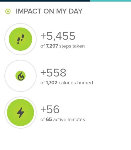 Stats from today's hike on the Davis Ponds trail in Staunton State Park.  Today's step count was 5,455.