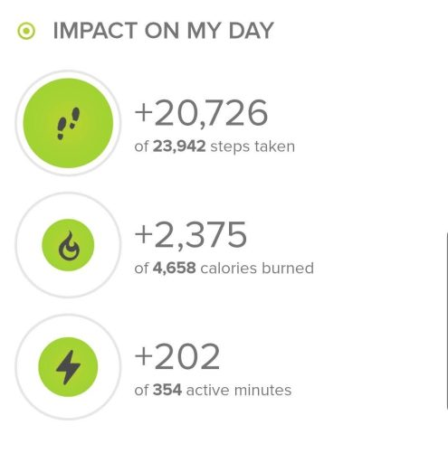 My stats from today's hike according to fitbit.com.  Today's hike was 20,726 steps.