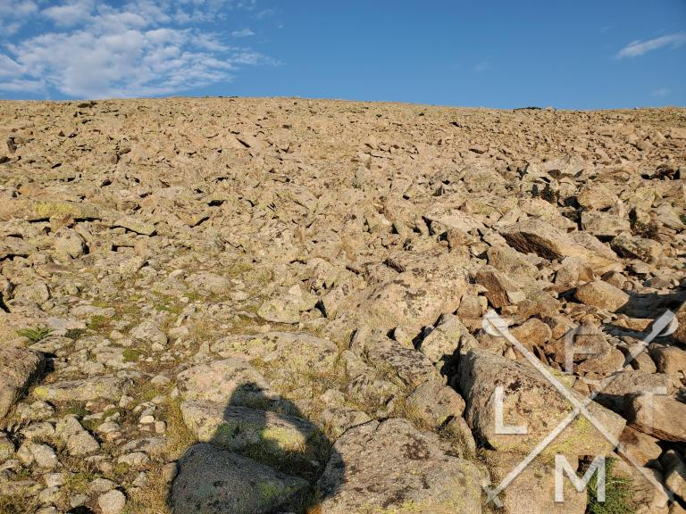 The rockfield at the end of the forest that changes the hike from a forest to a rocky tundra.