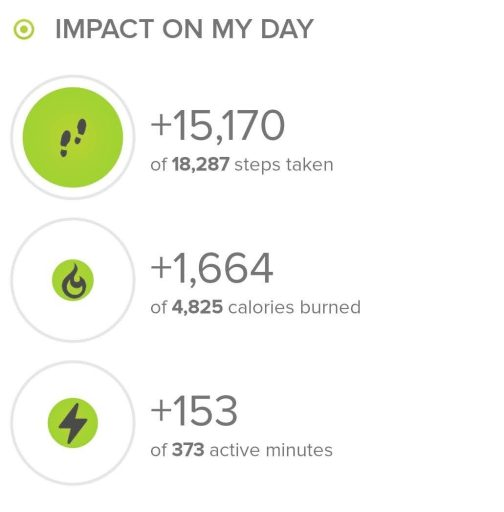 The step count from today's hike according to my fitbit.  Today's hike was 15,170 steps.