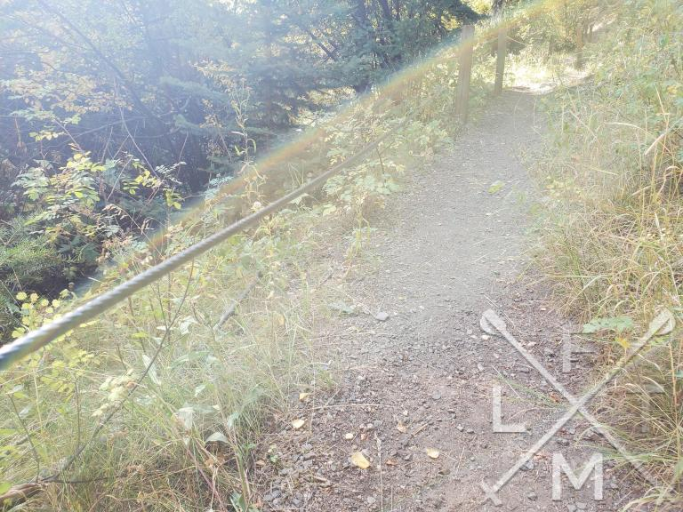 A guide wire on the side of the trail between evenly spaced posts.