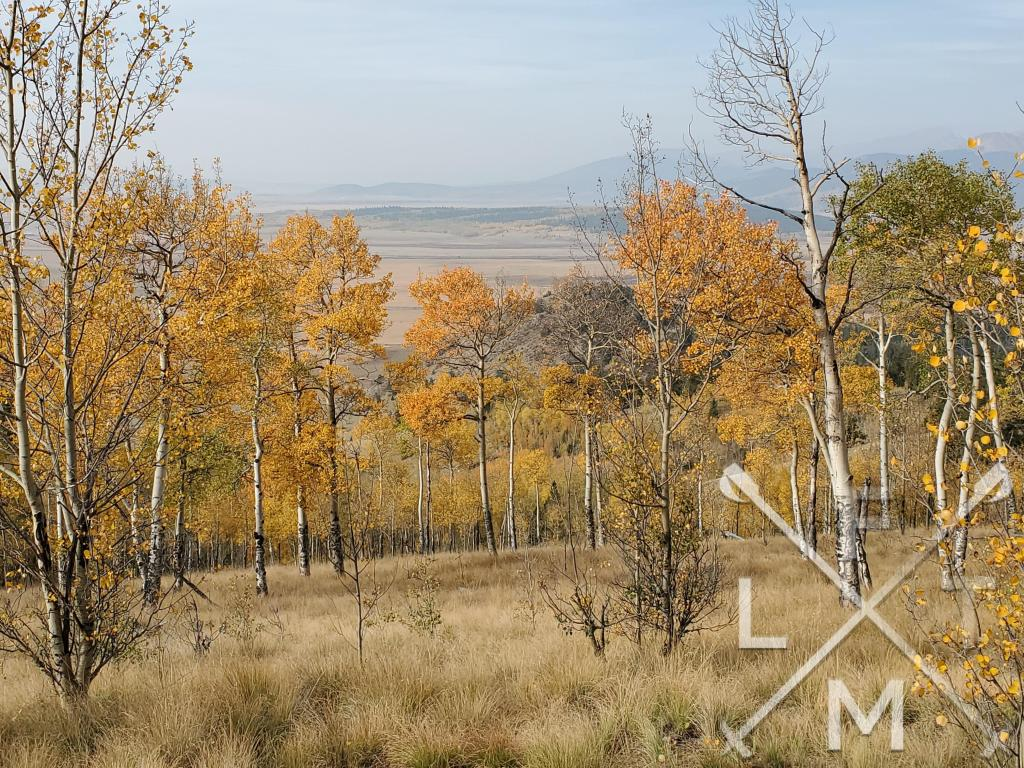 When you first clear the heavey woods you have views of the valley below, mountains in the distance, and aspen trees in the foreground.