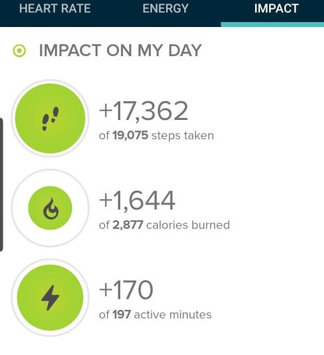 Step count from today's hike from my fitbit.  Step count was 17,362 steps.