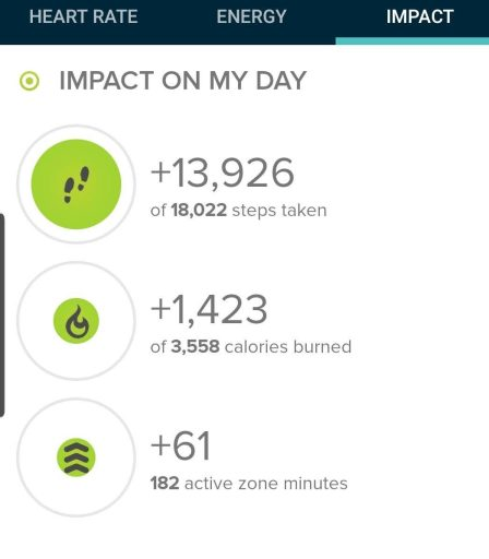 13, 926 steps on the hike according to my fitbit.