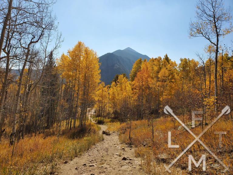 Yellow aspen leaves surround the trail with a mountain in the background.