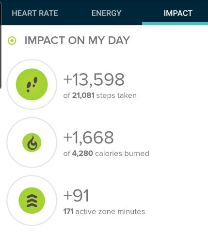 Today's Step Count from my Fitbit was 13,598 steps.