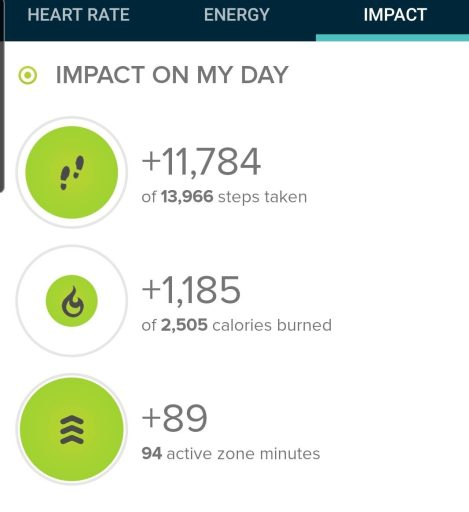 The step count from my hike at Sandstone Ranch Open Space was 11, 784 steps.