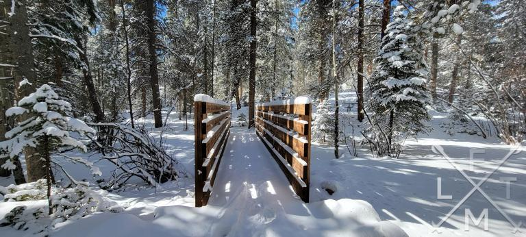 A snow covered wood pedestrian bridge surrounded by snow covered trees.