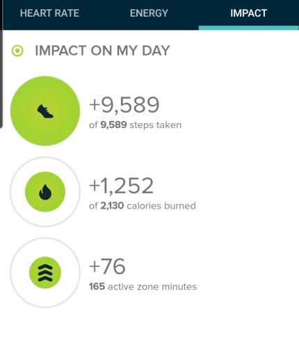 The step count for the hike to chief mountain was 9,589 steps.