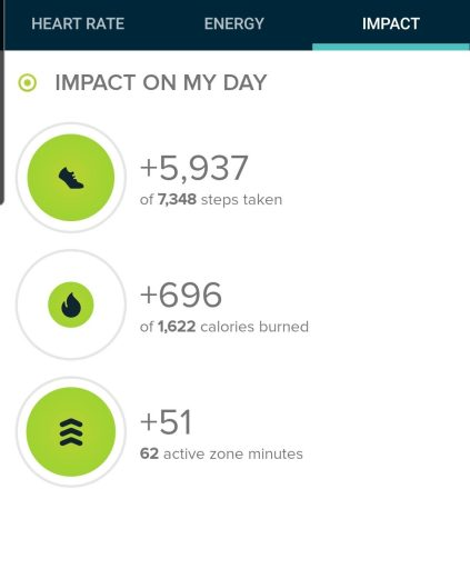 The step count from the Sun Mountain Trail in Santa Fe, New Mexico was 5,937 according to my Fitbit.