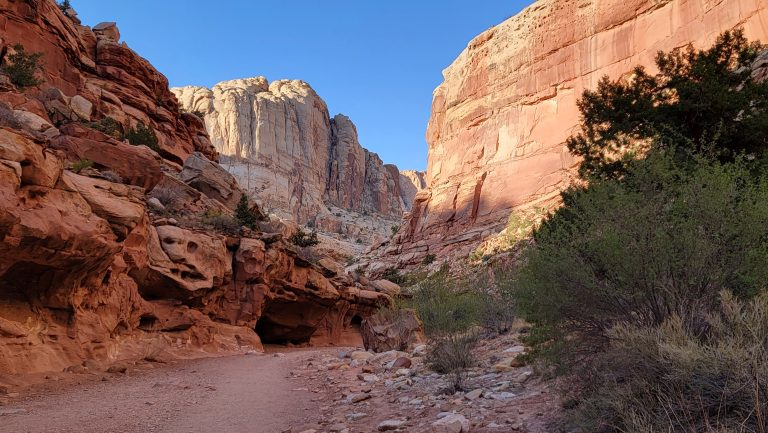 A section of the trail at Grand Wash that has rock walls on either side with a giant rock wall in the distance.