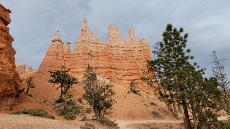 The queen hoodoo is a series of 5 spires with a long base.  The Queen is on the left side and the shortest of all the spires on the Queen's garden loop.