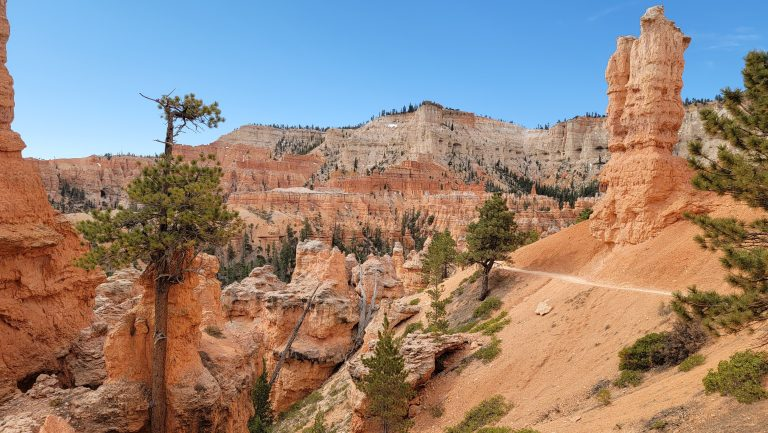 The East side of the trail had its own spectacular views but a little more of a wooded feel to it on the Peek-a-Boo loop at Bryce Canyon.