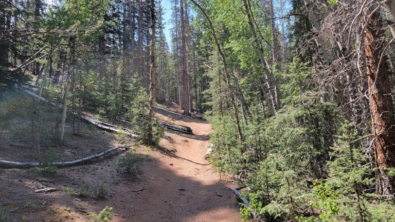 The trail to the Pancake Rocks gets much much steeper and is in moderately dense forest on the Pancake Rocks and Horsethief Falls hike.