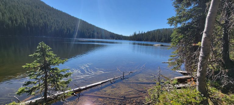 The view of timberline Lake from a half mile down the path.  The lake stretches to the edge of frame where it meets some evergreen lined small hills.