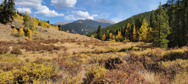 The view across the meadow is full of golden leaves and in the back ground a large rocky topped mountain on the Whiteside #697a Trail