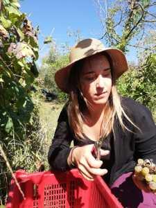 Martina D'Alessio vino naturale Sete