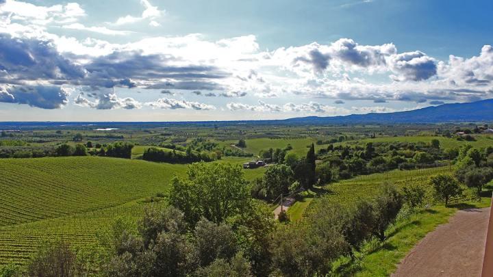 Azienda agricola Marco Carpineti tra sostenibilità e biodinamicità