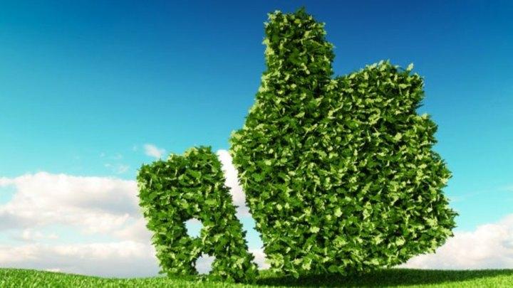 Green economy, venerdì il convegno a Latina