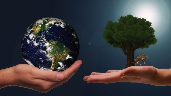 """Lo """"sostiene"""": la sostenibilità è il nuovo umanesimo"""