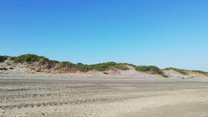 Viaggi corti: la duna, quella Polinesia tra Capo Portiere e Rio Martino (per tacer di Sabaudia)