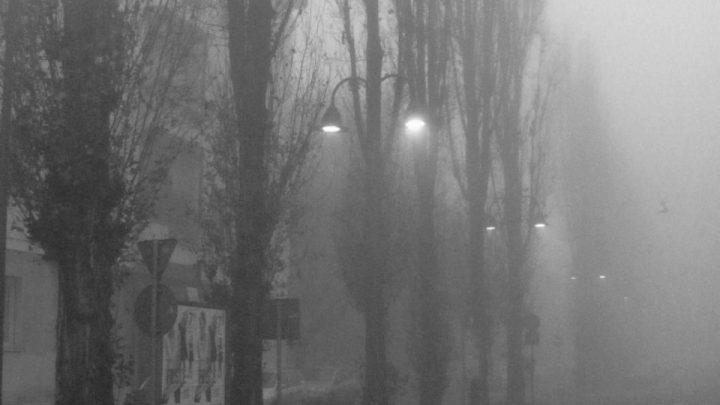 La tempesta di novembre e cadono gli alberi soli