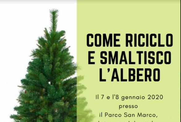 """Latina, Abc """"salva"""" gli alberi di Natale"""