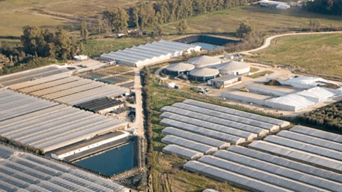 Esco Lazio, centrali biogas, linfa per terreni e agricoltura
