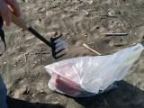pulizia-spiagge-latina