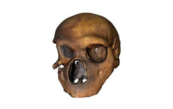 Cronache capoculo: i 9 neanderthal erano protesetini in villeggiatura al Circeo. Tributo a Damiano Bevilacqua e Sabino Vona