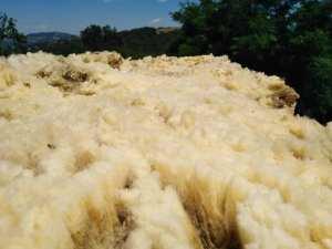 Rubrica: La lana non è un rifiuto – 1