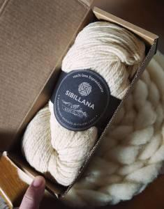 la filiera della lana nelle marche