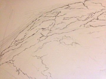 Detail of Contour Line Drawing