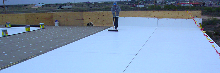 TPO Rolled Roofing