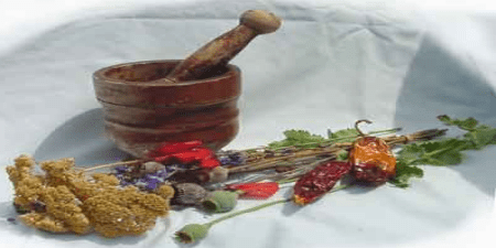 Photo from Herbal Medicines of the Civil War by Jim Long; used with permission