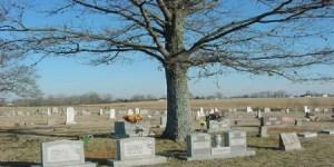 Copperas Springs Cemetery, Guy, Arkansas